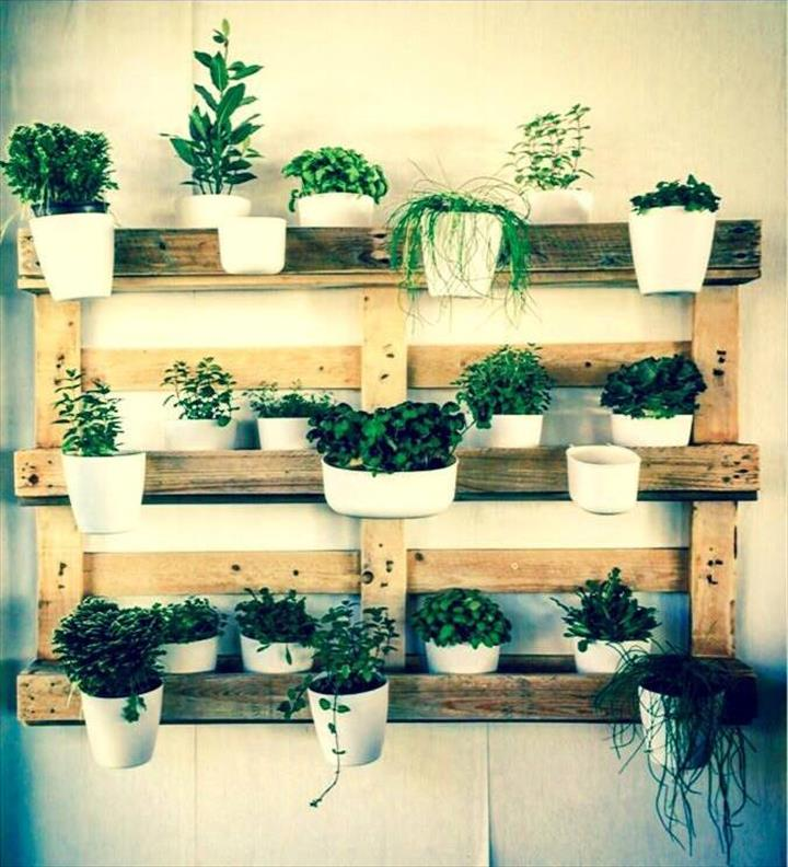 custom made wooden pallet wall hanging garden